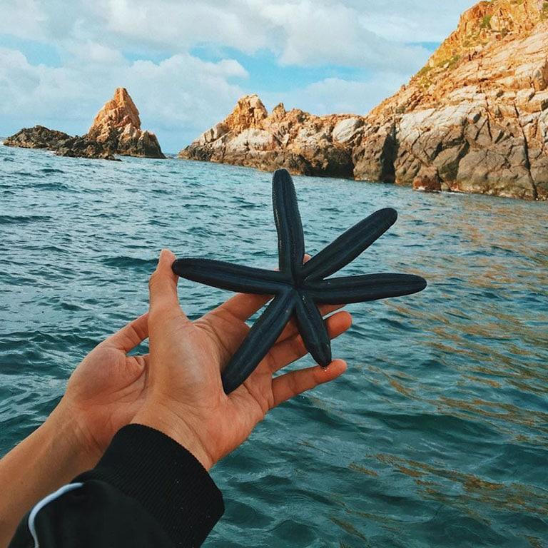 Đảo Hòn Sẹo Quy Nhơn