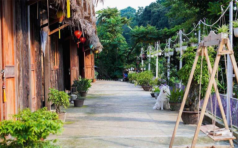 Thiên Thảo Garden Đà Lạt