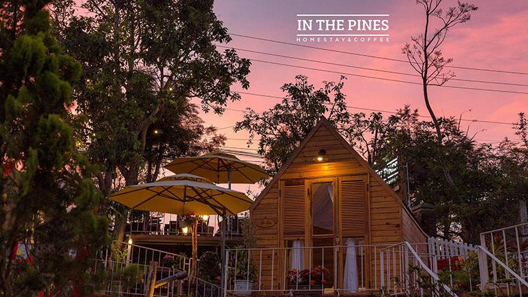 In The Pines Homestay Đà Lạt