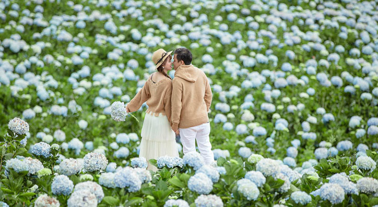 vườn hoa gần Đồi chè Cầu Đất Đà Lạt